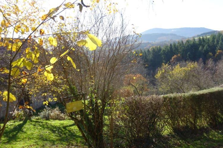 Gite Boisseau-automne_Vue Mont Beuvray-Bibracte