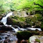 Cascade de la Canche dans le parc naturel du Morvan