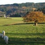 Vue sur le village de la Grande Verrière en Saône et Loire