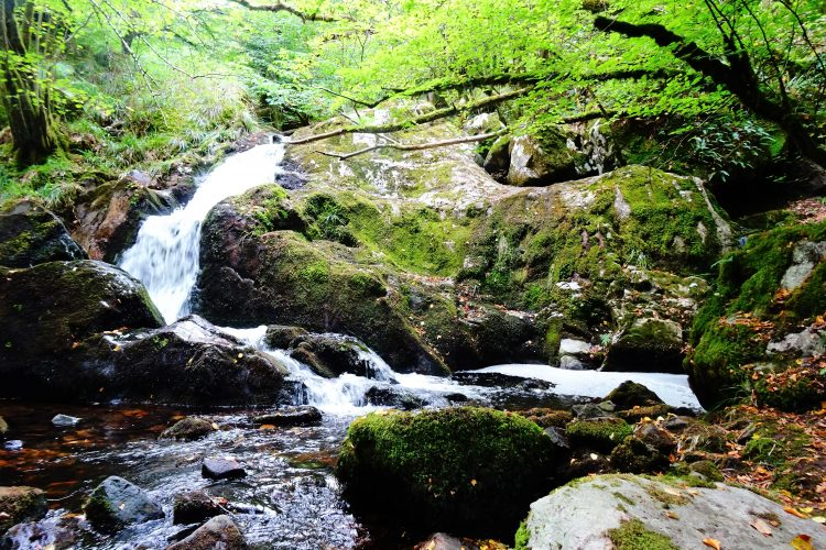 Gorge de la Canche-Morvan-cascades-bourgogne 6