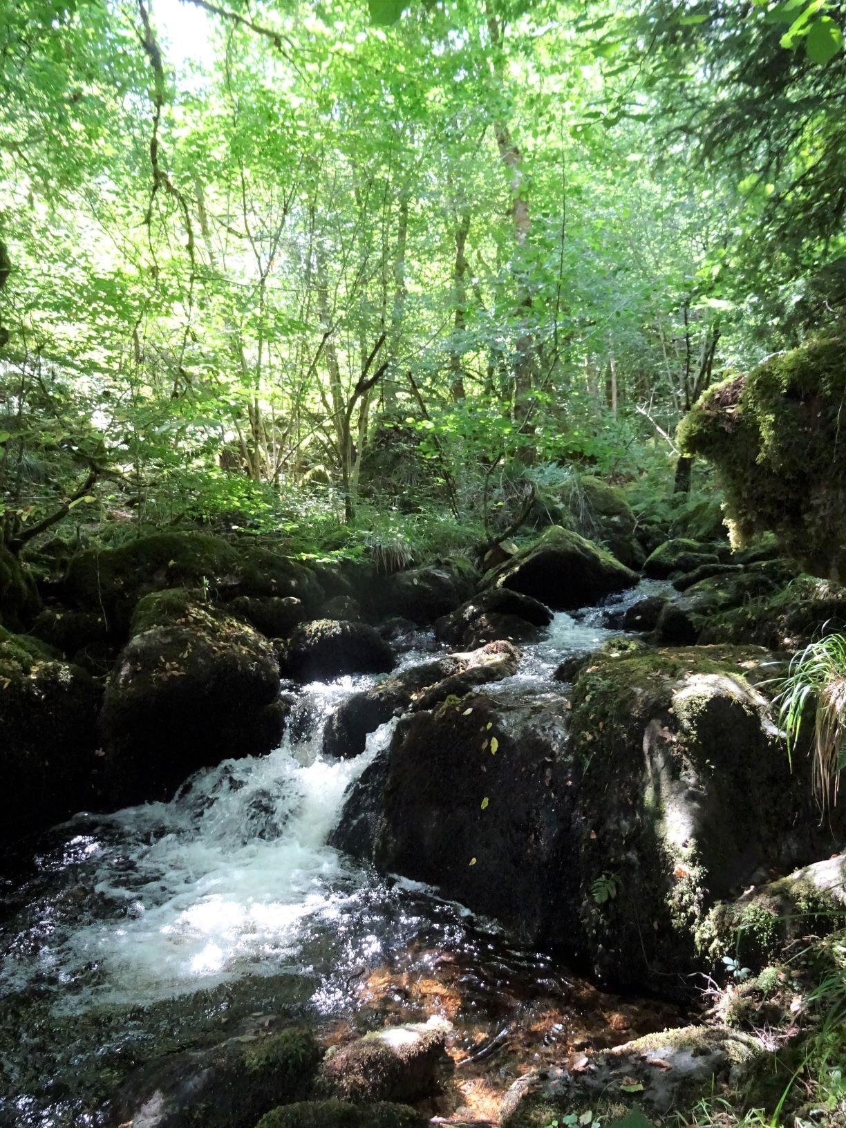 cascade d'eau Gorges de la Canche situé dans le Morvan près de Boisseau